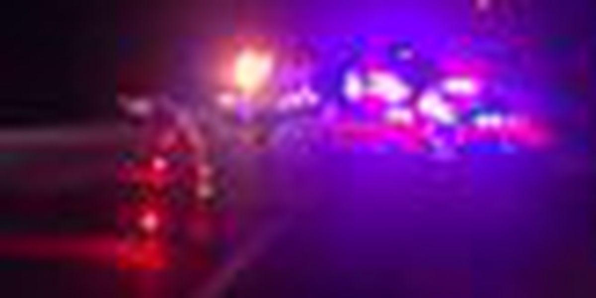 Motorcyclist ID'd in fatal I-95 hit-and-run