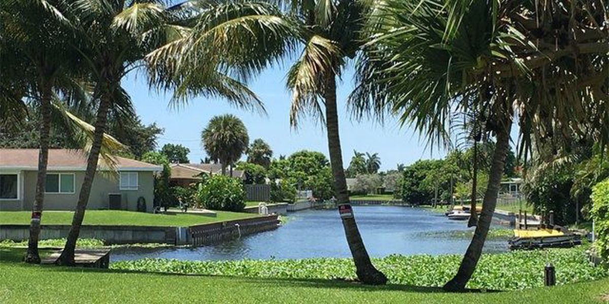 Man nearly drowns in West Palm Beach canal