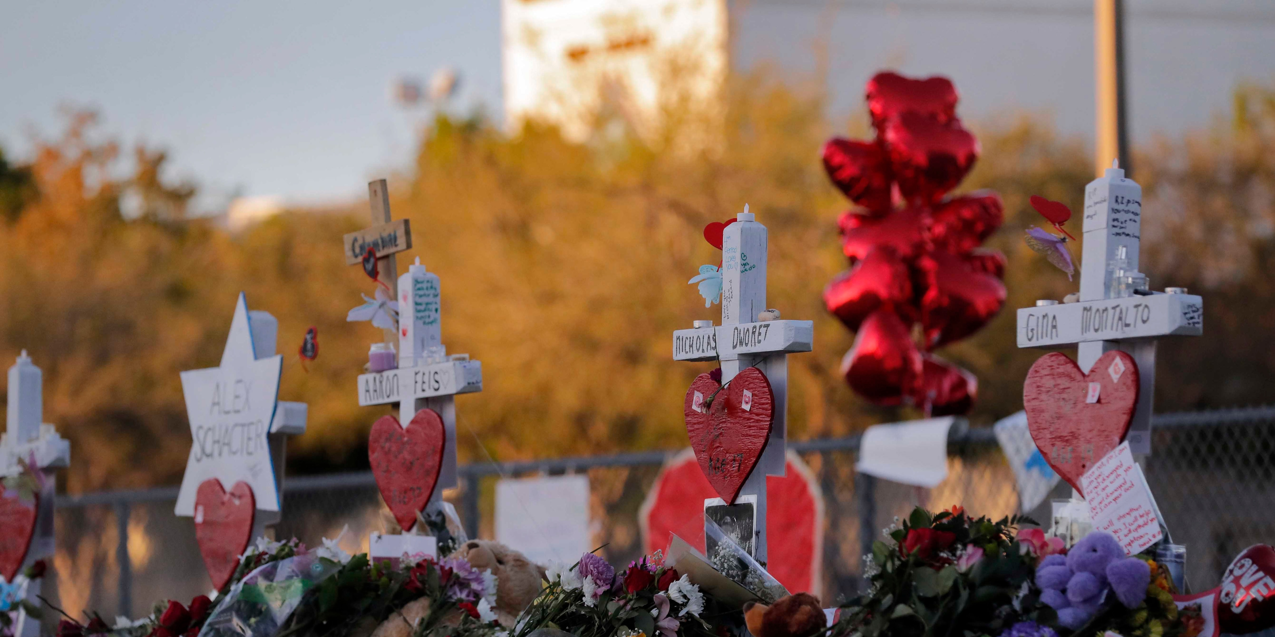 Second Parkland survivor dies in apparent suicide