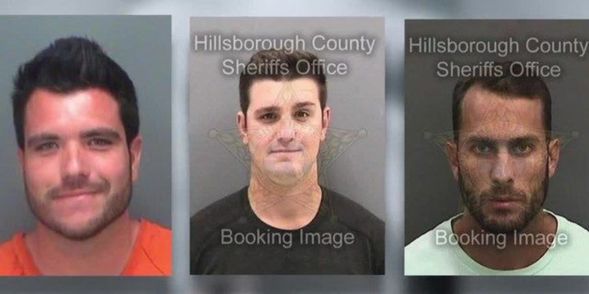 3 Plead not guilty to shark-dragging charges