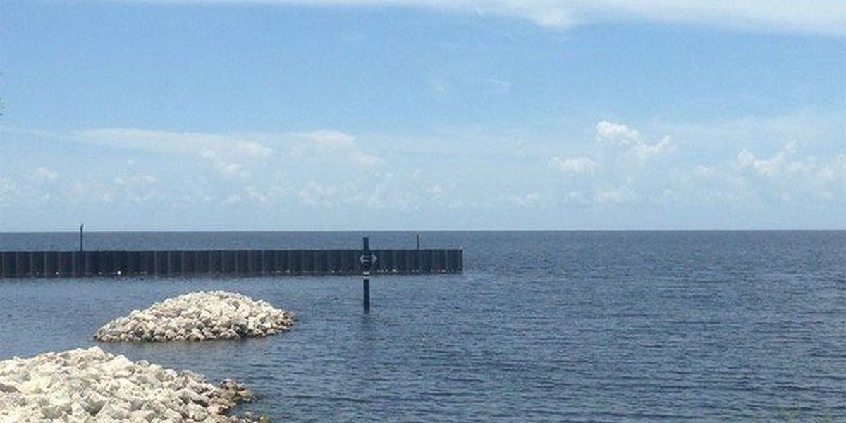 State: Algae in Lake Okeechobee not toxic