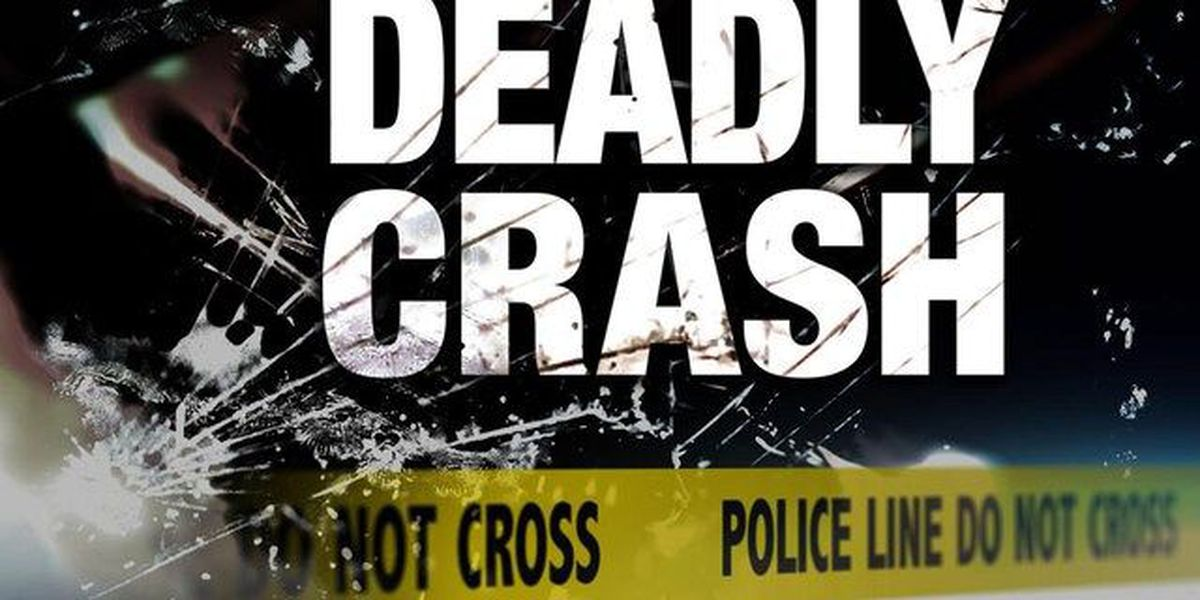 Fatal crash on U.S. 27 near South Bay