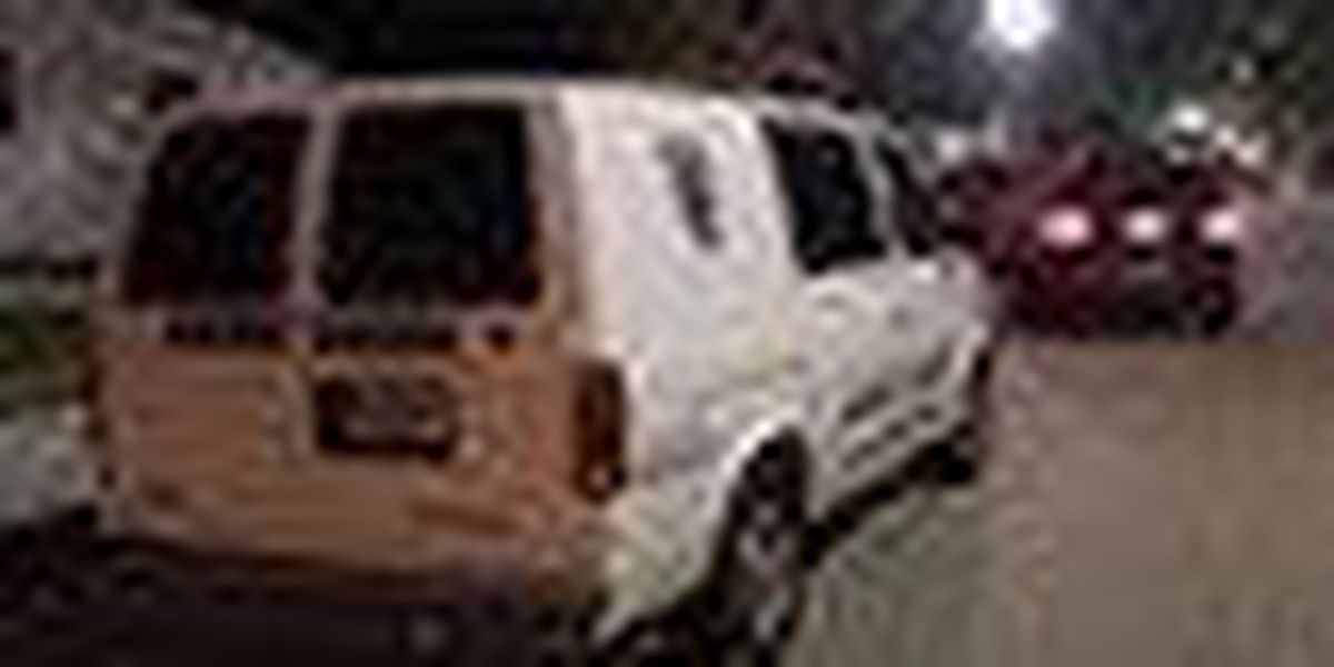 West Palm police search for carjacking suspects