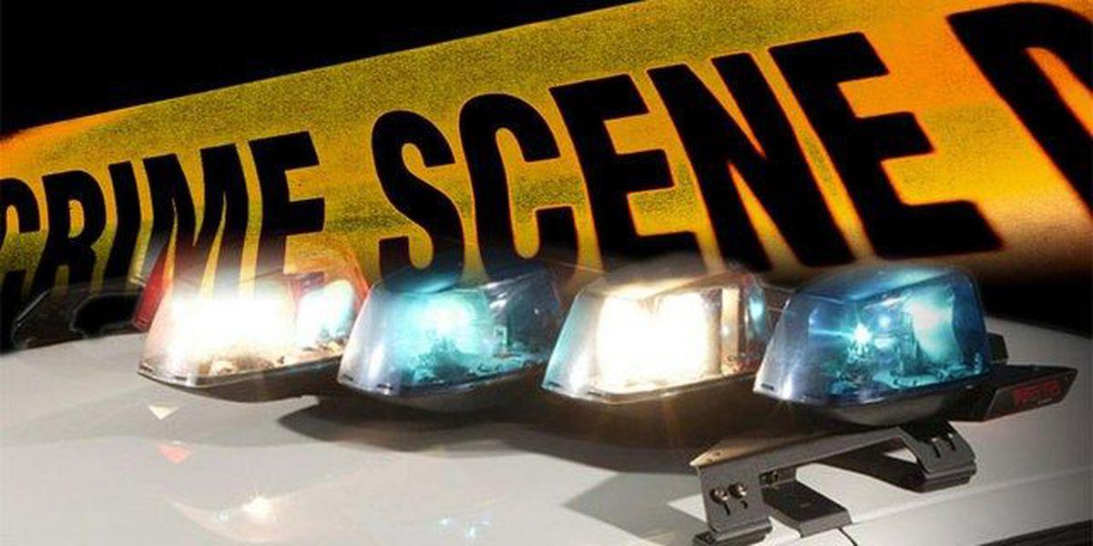 PBSO investigates possible murder/suicide
