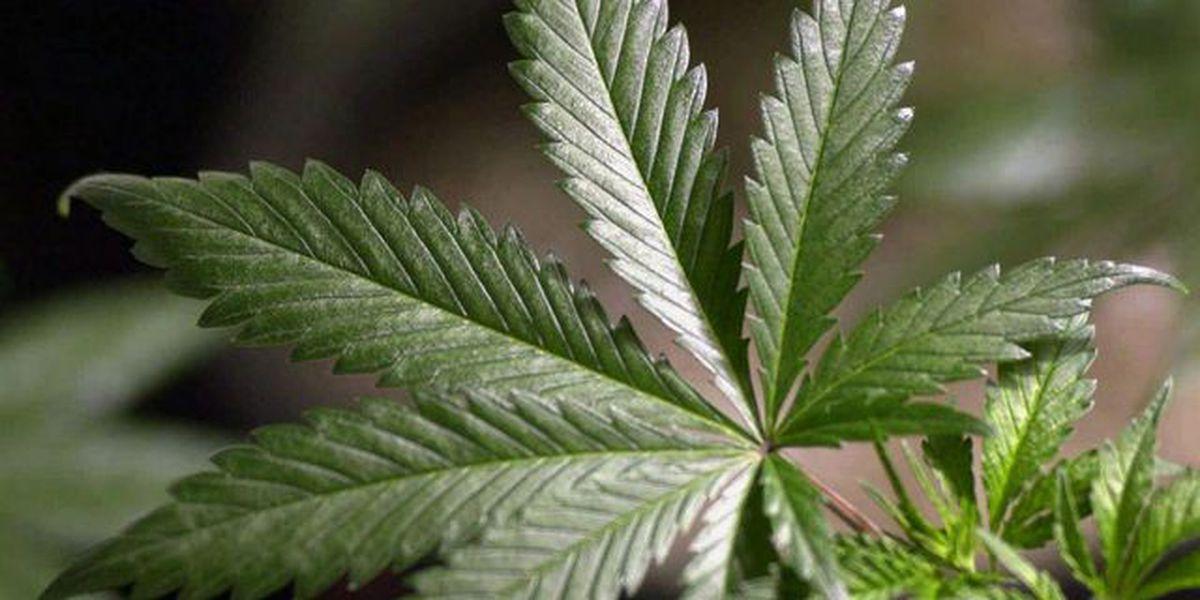 Smoking Marijuana Might Have Some Surprising Health Benefits