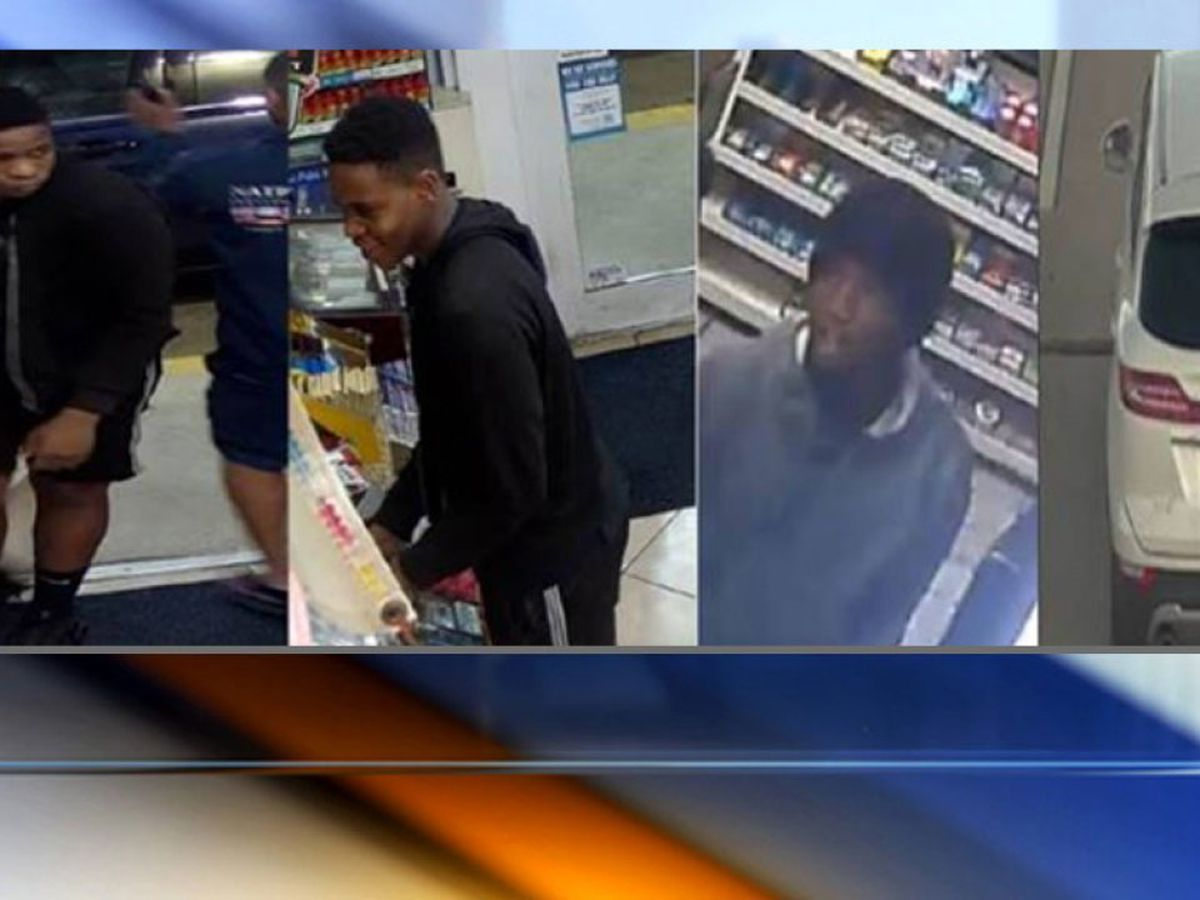 PBSO: Suspects wanted for auto theft, fraudulent credit card use