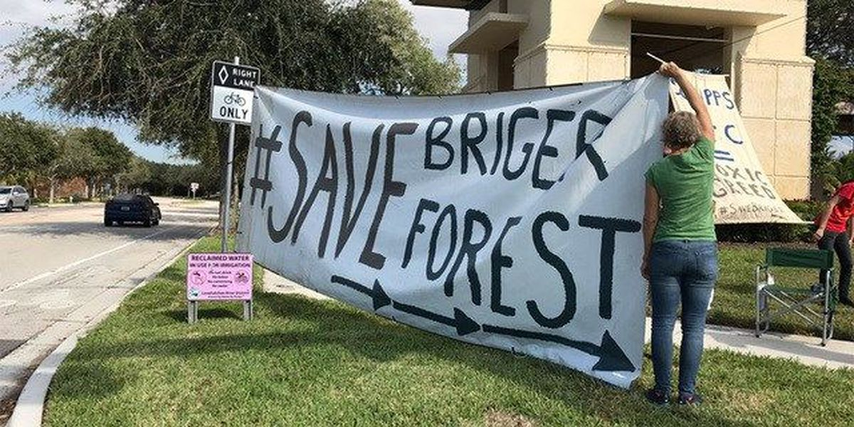 Protesters fight to save the Briger Forest