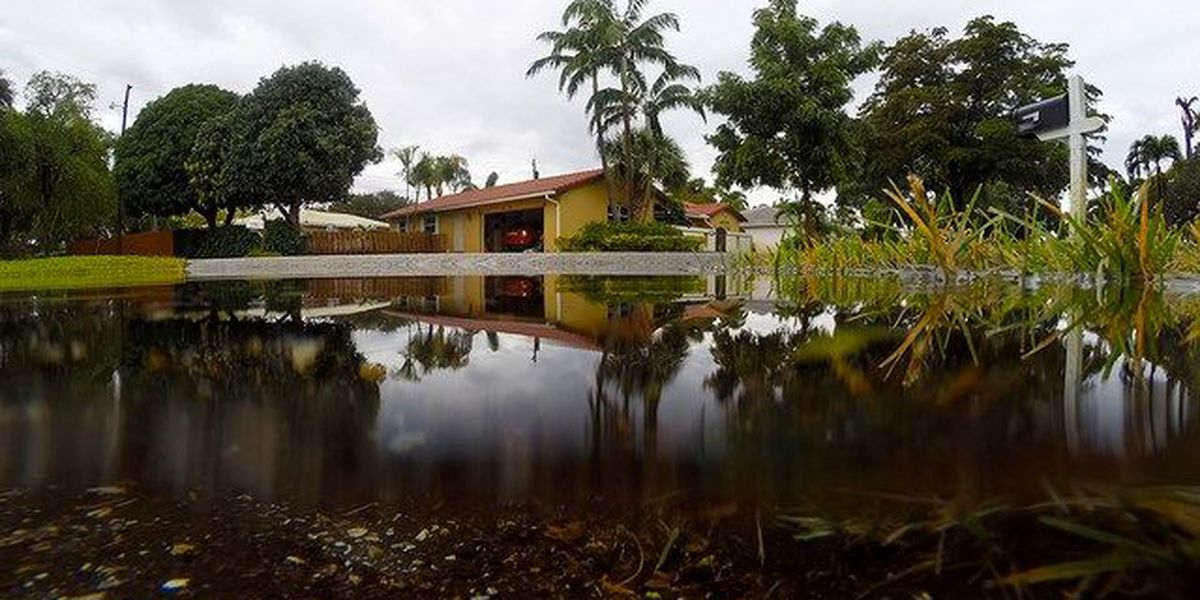 Disaster loans available for January flooding