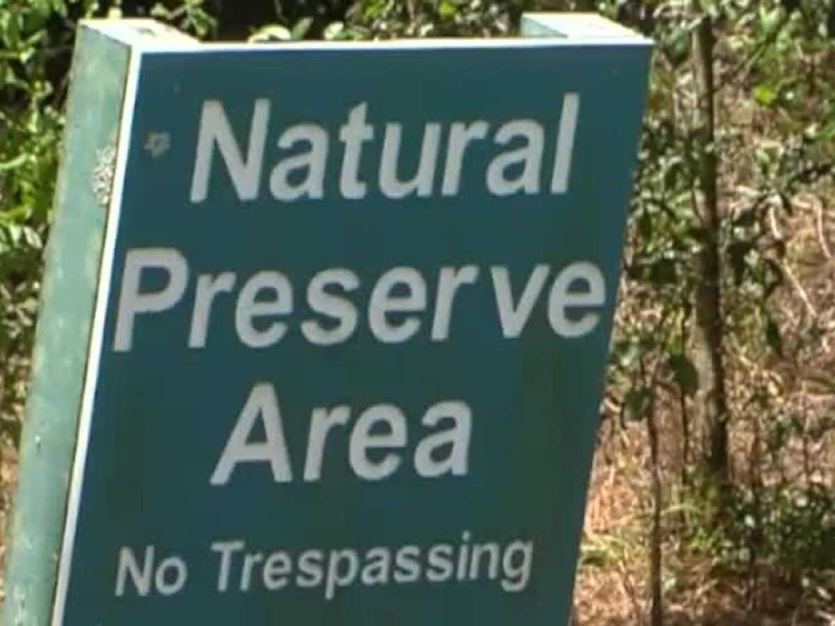 Wellington residents fighting to protect nature preserves, stop development